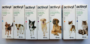 Activyl_Dog_Cat