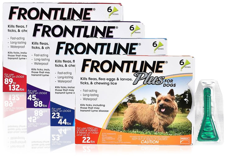 How Long Does Frontline Plus Last On Cats