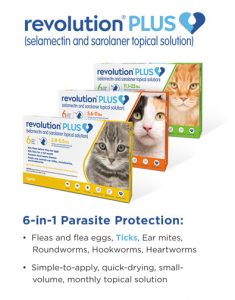 Picking A Flea Tick Medication For Your Pet Dr Justine Lee Dr Justine Lee