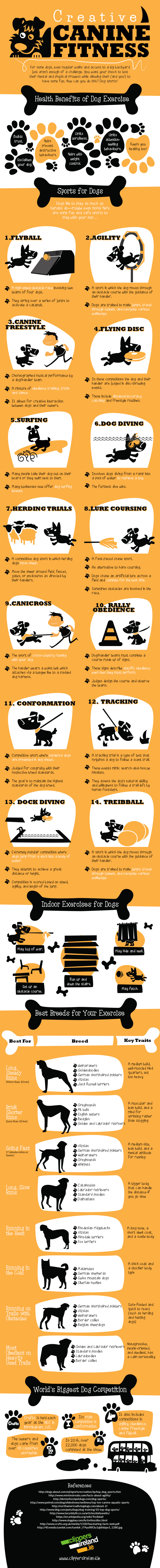 Dog_fitness_infographic