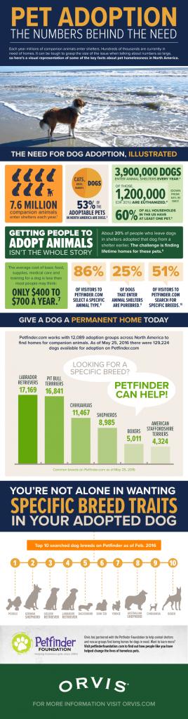 Pet-Adoption_Orvis