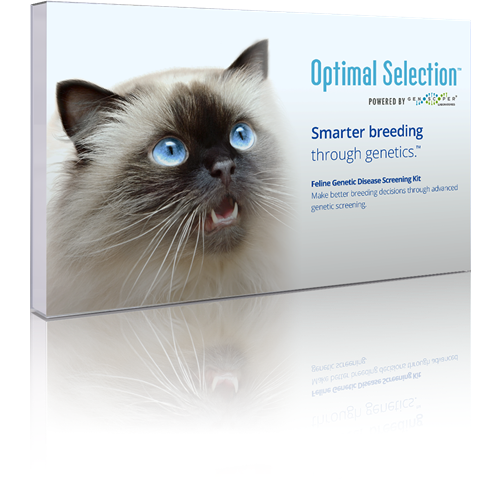 Optimal_Selection_Feline_Front_REFL__10_17_161