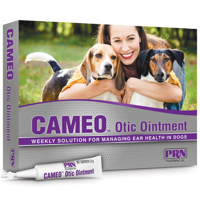 Antifungal Medication For Dogs Ears