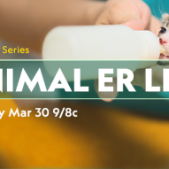 Dr. Justine Lee, DACVECC, DABT, as co-host analyst on Nat Geo Wild's Animal ER LIVE, starting March 30, 2019