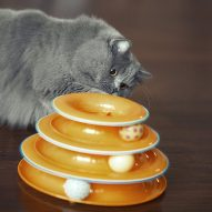 Top 10 holiday gifts for cats | Dr. Justine Lee, DACVECC, DABT, Board-certified Veterinary Specialist
