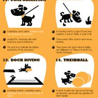 Creative ways to exercise your dog! | Dr. Justine Lee