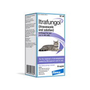 New treatment, Itrafungol, for cats with ringworm from Elanco | Dr. Justine Lee, board-certified veterinary specialist