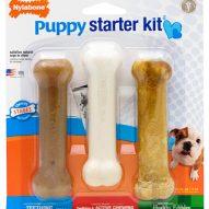 Nylabone Puppy Start Kit RECALL due to Salmonella | Dr. Justine Lee