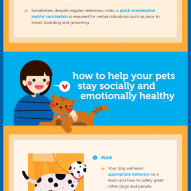 How to keep your dog or cat healthy and happy | Dr. Justine Lee, DACVECC, DABT, America's Veterinariana